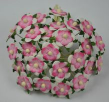 ROSY PINK WHITE 2-LAYERED sweetheart blossom Mulbery Paper Flowers